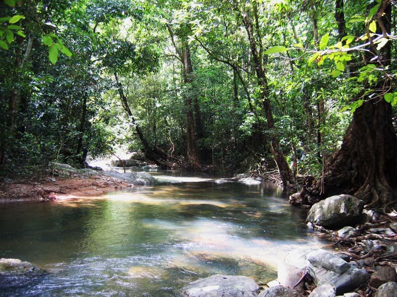 Blackwell Creek